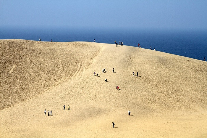 What is the largest asian desert