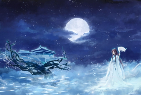 Full moon night anime
