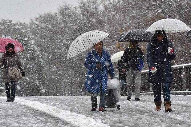 Japan meteorological weather map