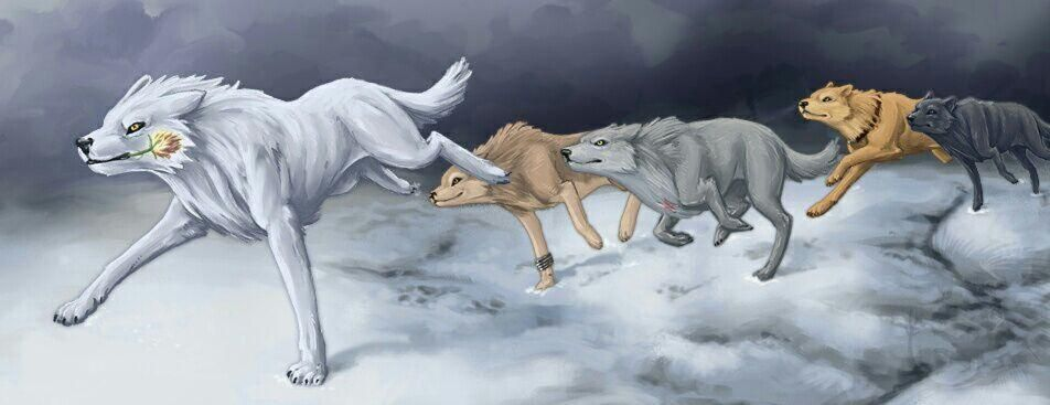 anime you are What wolf