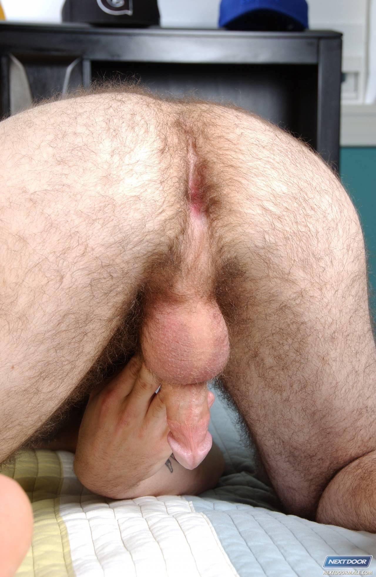 pics Asshole sex