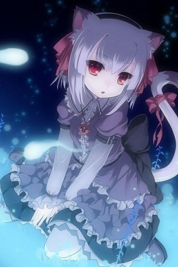 cat art Anime girl