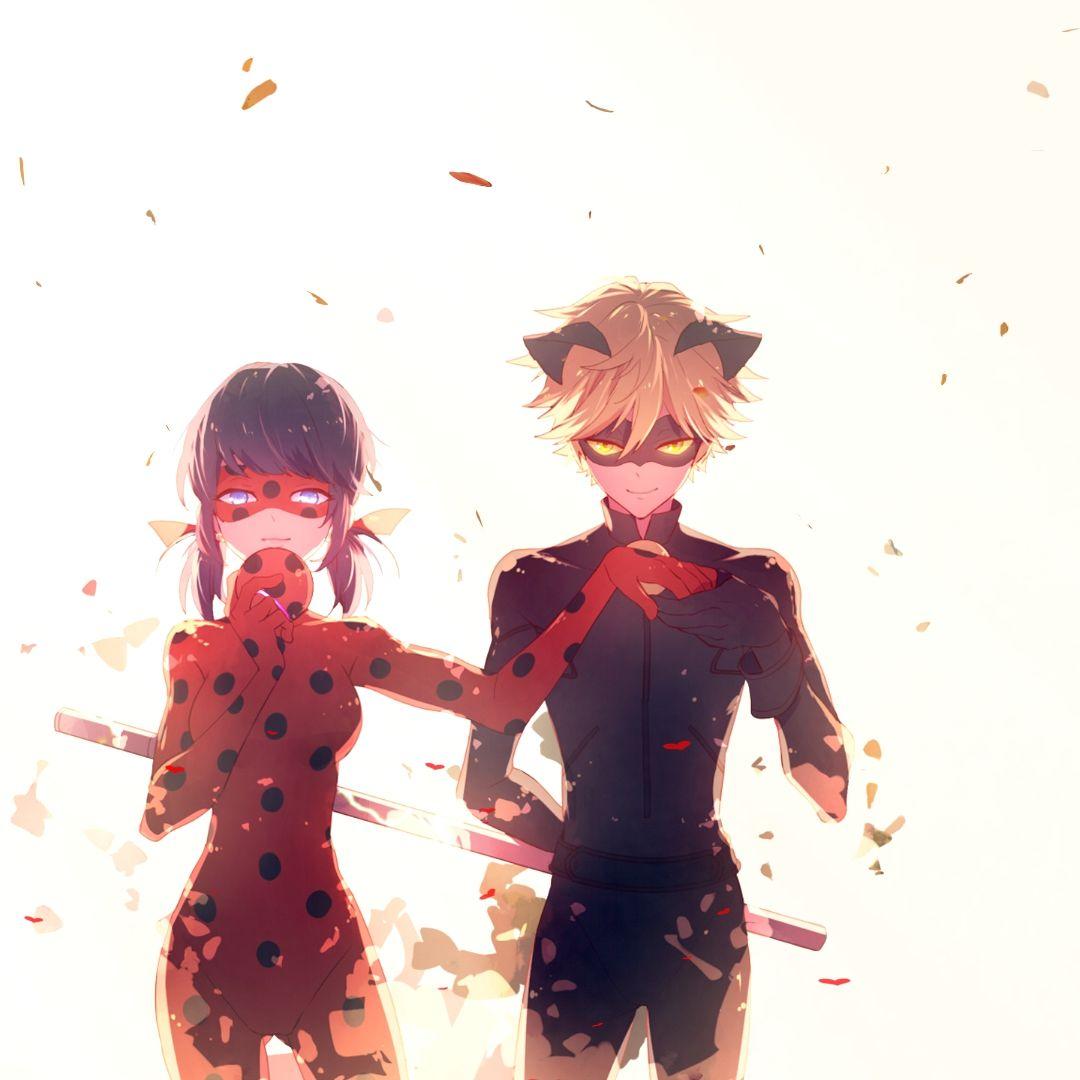 cat noir anime Ladybug and